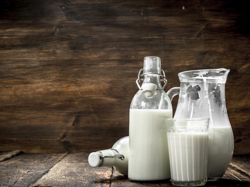 Sữa là một nguyên liệu tuyệt vời mà con người đã tìm ra